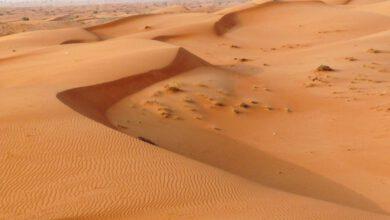 صورة ( الرمل مقابل المياه والتنمية ) المعادلة الصعبة و السهل الممتنع لضمان المستقبل الزاهر لمصر ولجلب مزيد من العملة الصعبة